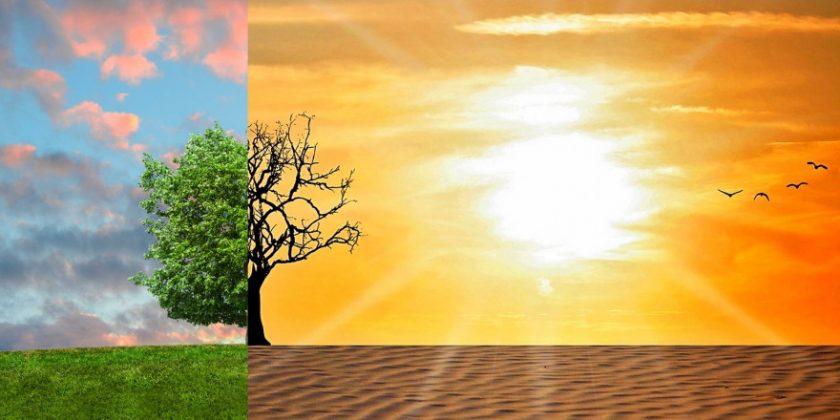 Neue Umsatzpotenziale durch den Klimawandel?