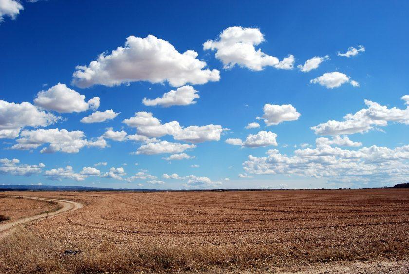Hilft die Indexversicherung den Bauern gegen Dürre?