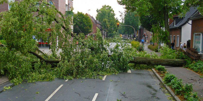 Unwetter verursachen seit Jahresbeginn Schäden von 1,3 Mrd. Euro