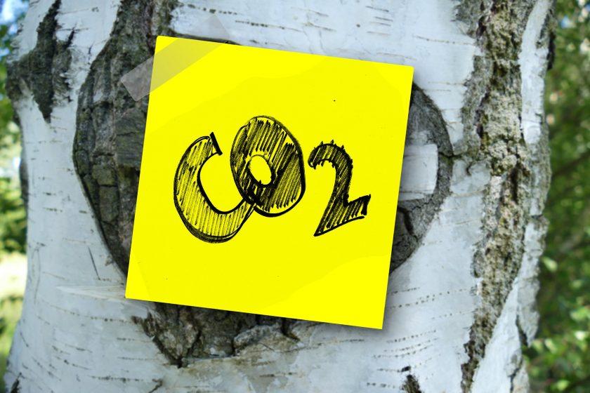 Allianz und Munich Re fordern höheren CO2-Preis