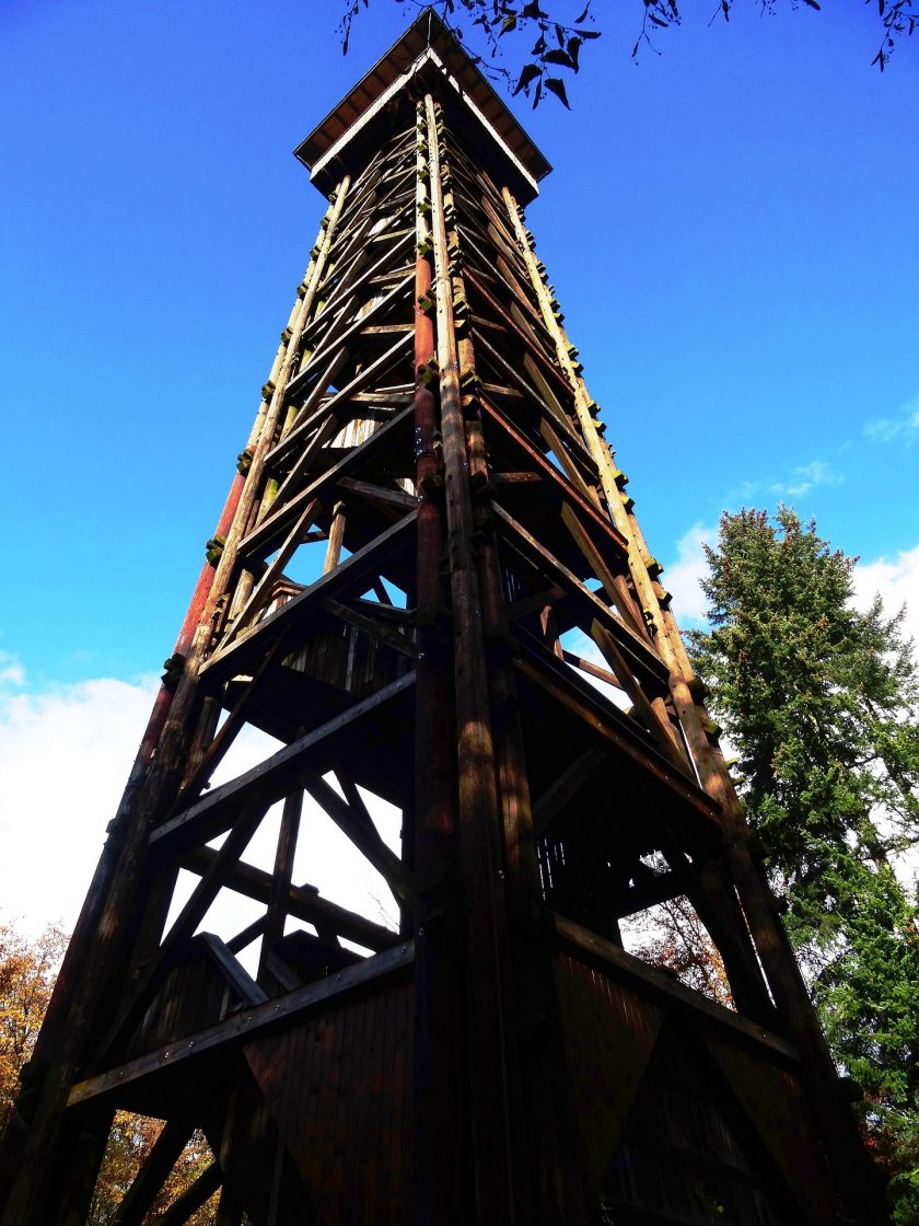 Goethe-Turm wird dank Millionen an Versicherungsgeldern wieder aufgebaut