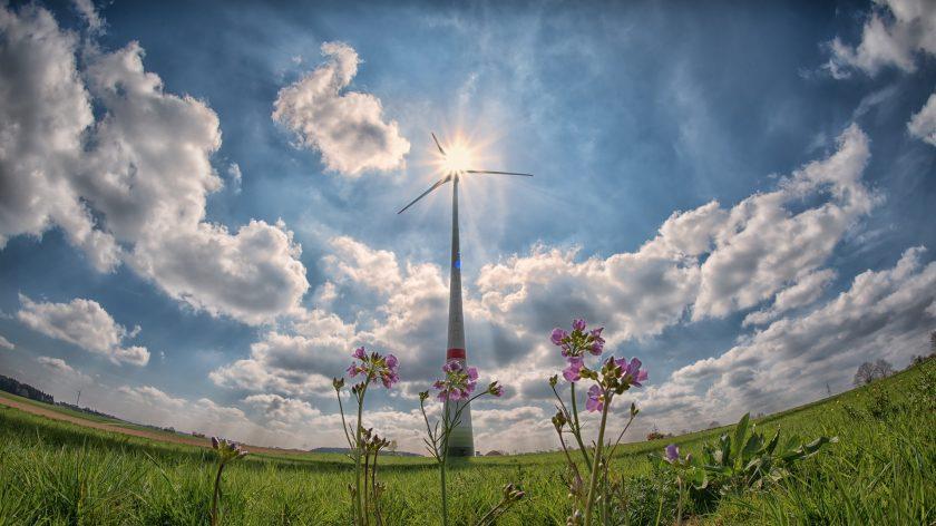 """Grüne Versicherer: """"Erneuerbare Energie haben Investorenvertrauen gewonnen"""""""