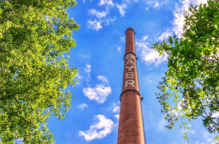 Streit um Glyphosat: Bayer erzielt juristischen Teilerfolg