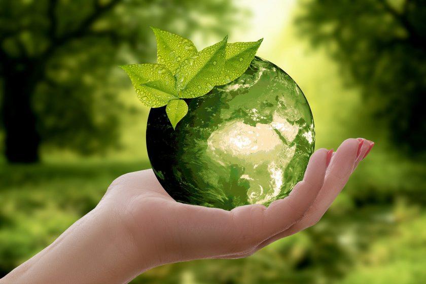 IVFP legt erstes Nachhaltigkeits-Rating für Fondspolicen vor