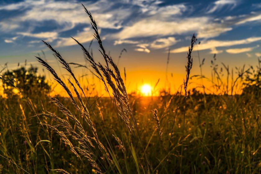 Versicherer und Landwirte fordern staatliche Förderung für Mehrgefahrenversicherung