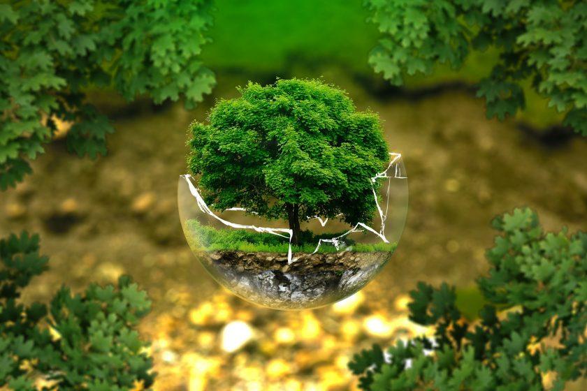 Branchen-Initiative Nachhaltigkeit bekommt Zuwachs