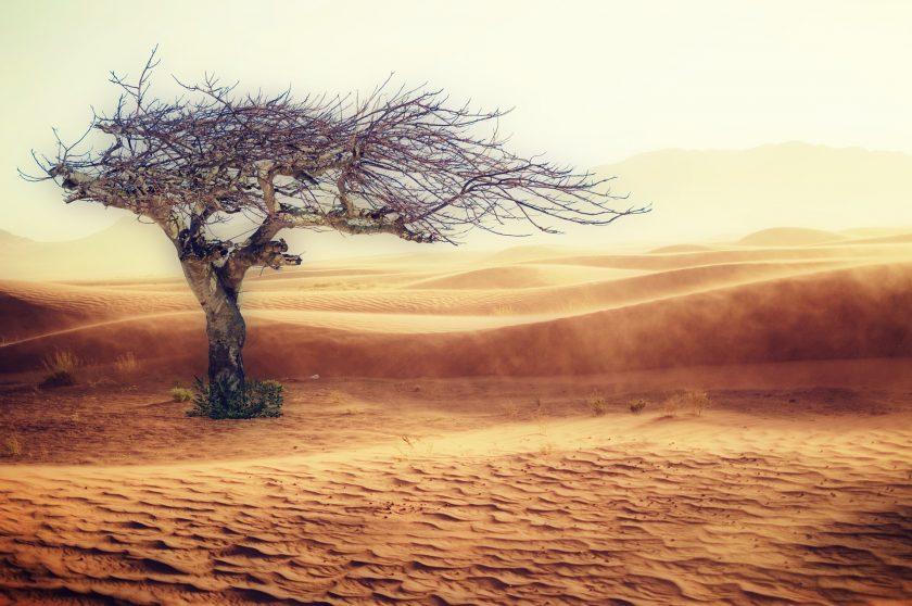 Ehrgeizige Klimawandel-Strategien von Versicherern unter Beschuss